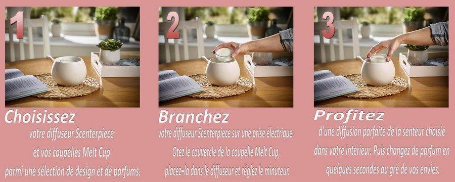 Scenterpiece-et-Melt-Cup-System